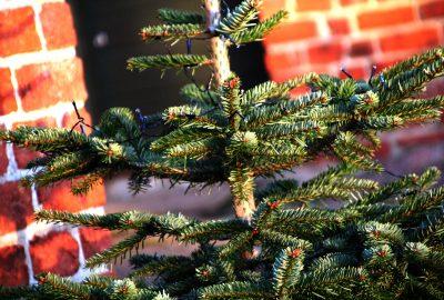 Minimalistiske julegaveønsker
